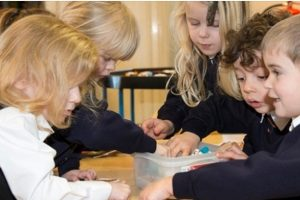 Joy Lane Primary Achieves Flagship School Status